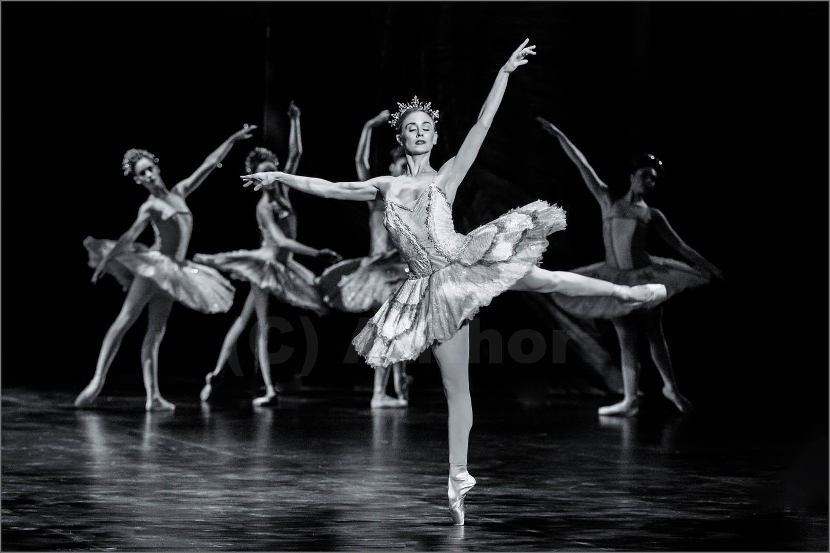3_PI_The Ballet Don Quixote _Stephen Kangisser