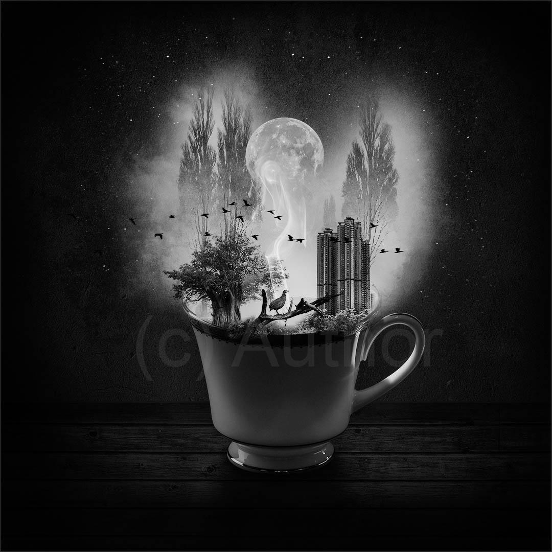 5_PI_Enchanted_Gary Andrew Peck