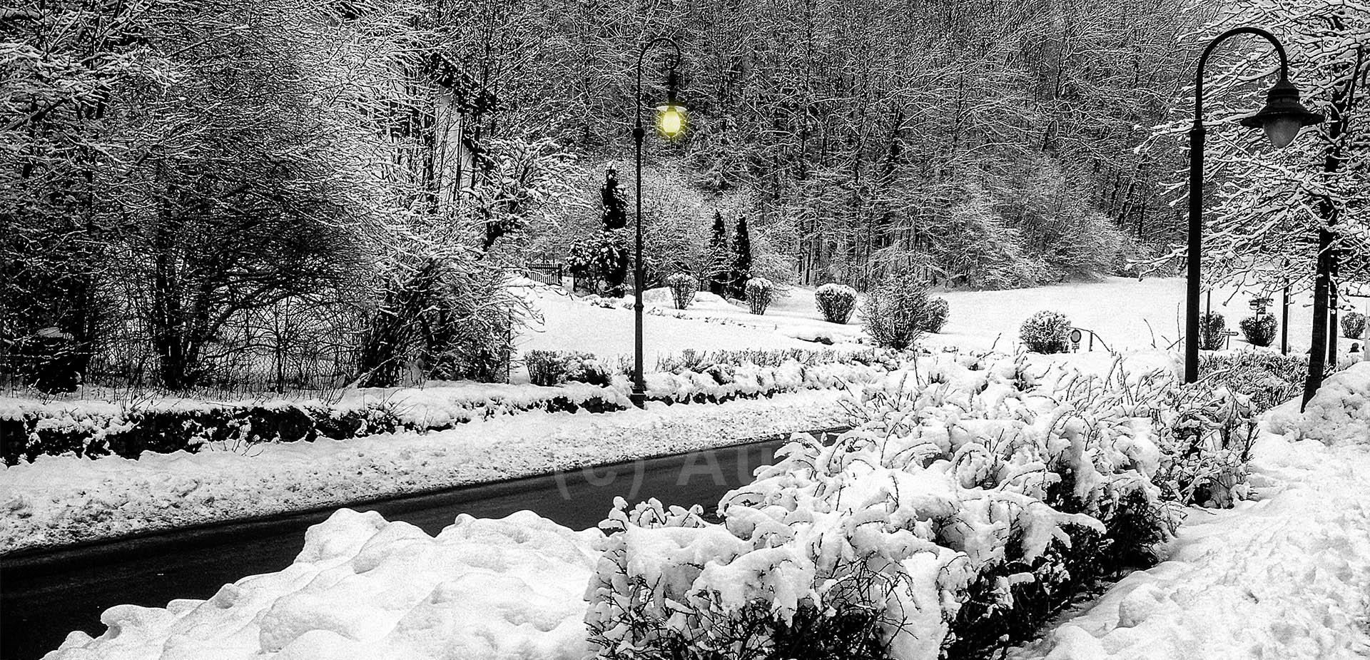 5_CP_Somewhere in Austria_David Wolstencroft