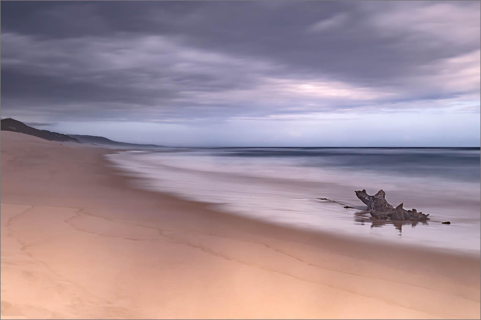 2_PI_Just a log and a beach_Linda Carter